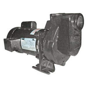 Dayton Self Priming Pump 1 2 Hp cast Iron 5wxu5