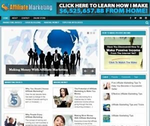 Hot Affiliate Marketing Blog For Sale Established New Turnkey Internet Business