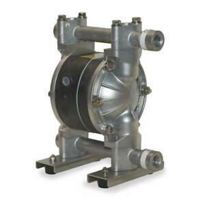 Pump diaphragm 1 2 6py49