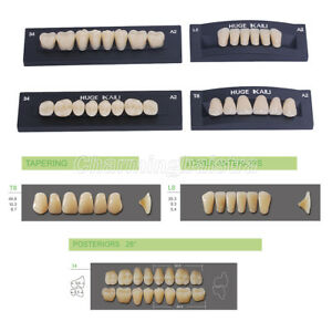 Full Set Kaili Dental Synthetic Polymer Resin False fake Teeth Denture Upper low
