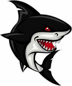 Shark Cartoon Great White Bumper Sticker Vinyl Decal