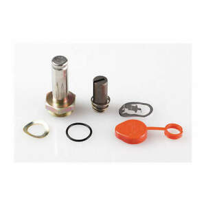 Valve Rebuild Kit with Instructions 304354
