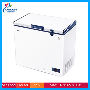 Haier Commercial Deep Chest Freezer 60c For Tuna Seafood Sashimi Sushi 151l New