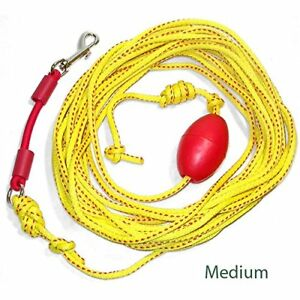 Teach Your Dog To Come Outdoor Drag Line Long Leash With Bungee 33 Medium
