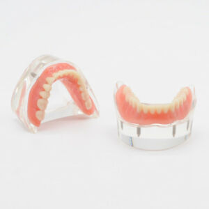 Dentist Teach Model Lower Mandibular With 2 4 Implants Restoration