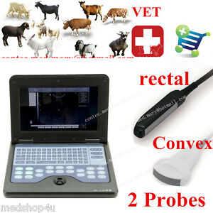 Veterinary Ultrasound Scanner Vet Laptop System Machine 2 Probes Rectal Convex