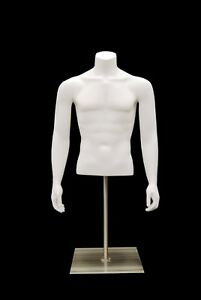 Male Headless Torso Mannequin Matte White Male Table Top Torso Mannequin