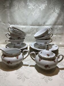 Bavaria Germany Porcelain Tea Coffee Set 20 Pieces Pink Roses On White Pattern
