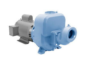 30spm30 Goulds Pumps Primeline Sp Centrifugal Pump