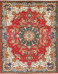 Persian Floral Hand Knotted Decorative Oriental Area Rug Gorgeous 10x13 Signed