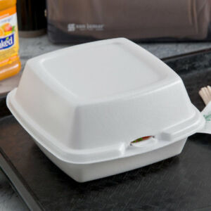500 pack 6 X 6 X 3 White Foam Hinged Lid Take Out Containers
