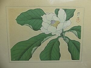 Antique Sakai H Itsu Rinpa Edo Period Japanese Drawing Lotus Flower Excellent