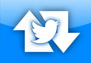 Twitter Service Retw ets Lifetime Guarantee Top Rate Seller