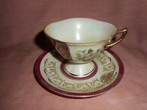 Antique Rose Tea Cup And Saucer Set By Brinnco