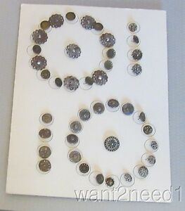 Antique Collectors Button Display Card 42 Cut Steel Mixed Metal Victorian Floral