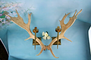 Pair Vintage Antler Sconces Wall Lights Hunting Hunter Cabin Woods