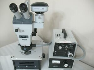 Zeiss 47 50 57 Stemi Stereozoom Microscope Diagnostic Stand Excellent Optics