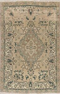 Persian Wool Rug One Of A Kind Hand Knotted Floral Muted Oriental Area Rug 3 X 5
