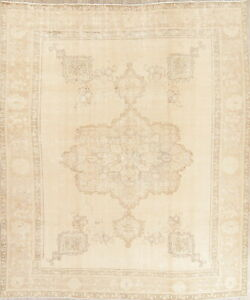 Old Antique Muted Persian Wool Hand Knotted Geometric Oriental Area Rug 9 X 12
