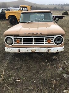 1965 67 Dodge Sweptline Powerwagon Painted Grille