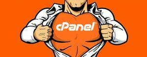 Cpanel Web Hosting Free Ssl Softaculous And More