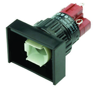 Eao 31 122 025 Switch Pushbutton Dpdt 5a 250v