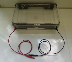 Owl Separation Systems A2 Horizontal Gel Electrophoresis System