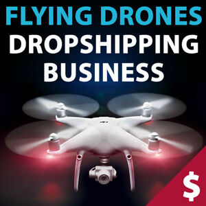 Drones Store Turnkey Dropshipping Website Business