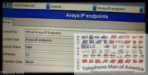 Avaya Ip Office 500 Base Card With 12 Virtual Ip Endpoints 229444 229445 275619