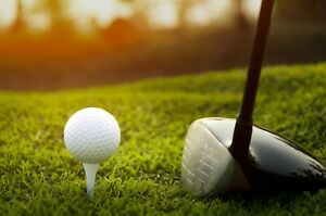 Golfing Shop And Blog Website For Sale Fully Automated Online Business