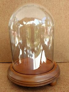 Glass Dome Display Case Box W Handmade Wood Base 7 Vintage For A Special Piece