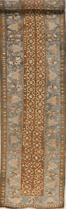 Antique Ptre 1900 Old Heriz Bakhshayesh Runner Rug Hand Knotted Wool Carpet 3x14