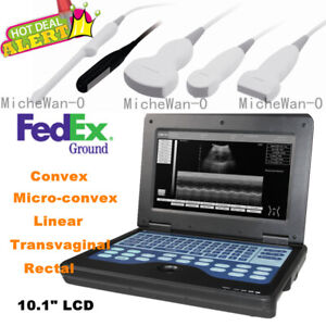 Human vet Ultrasound Scanner Portable Laptop Machine Digital Probe Usa Fedex