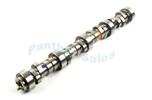 Elgin E1840p Sloppy Stage 2 Cam Camshaft Chevy Ls Ls1 585 Lift 286 Duration
