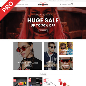 Dropshipping Store Sunglasses Professional Turnkey Website Business