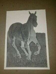 Vintage Zinc Metal Letterpress Printing Plate Horse Milwaukee Journal