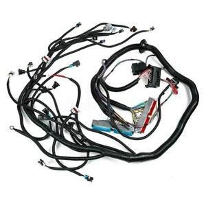 Standalone Wiring Harness W 4l60e Dbc 4 8 5 3 6 0 For 1997 2006 Ls1 Engine Us