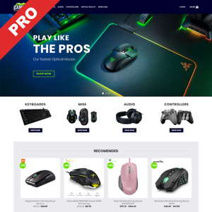 Gaming Store Turn key Dropshipping Website Profitable Dropship Business
