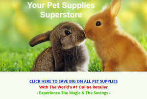 Pet Supplies Website Business For Sale Fully Stocked Millions Of Items