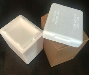 Thermosafe Insulated Foam Container With Shipping Box Thermo Chill Mailer