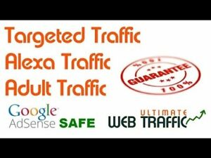 Increase Website Traffic With Targeted And Unlimited Traffic 100k Power Plan