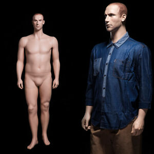 Male Adult Plus Size Fiberglass Realistic Mannequin With Molded Hair Face