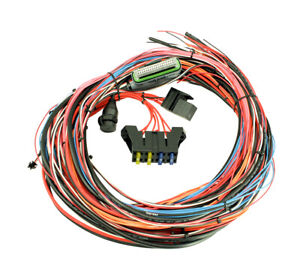 Aem Ems 4 Engine Management Universal Wiring Harness 96 Flying Lead