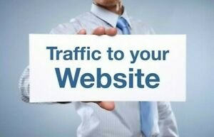 Unlimited Website Traffic For 14 Days