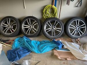 Mustang Rims And Snow Tires 800 Miles Young