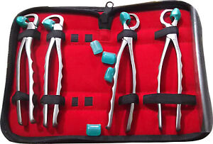 Dental Extracting Forceps Kit Tooth Pliers Oral Surgery Standard Series 4p Set