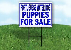 Portuguese Water Dog Puppies For Sale Blue Yard Sign Road With Stand Lawn Sign