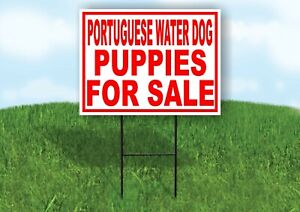 Portuguese Water Dog Puppies For Sale Red Yard Sign Road With Stand Lawn Sign