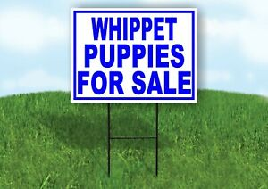 Whippet Puppies For Sale Blue Yard Sign Road With Stand Lawn Sign