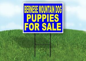 Bernese Mountain Dog Puppies For Sale Yellow Yard Sign Road With Stand Lawn Sign